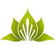 Pflanze mit geometrischer Form